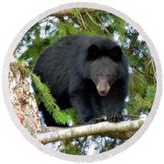 Black Bear 2 Round Beach Towel