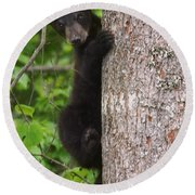 Black Bear Cub Round Beach Towel