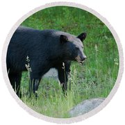 Black Bear Female Round Beach Towel
