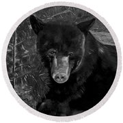 Black Bear - Scruffy - Black And White Cropped Portrait Round Beach Towel