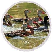 Black-bellied Whistling Ducks Round Beach Towel