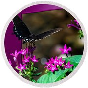 Black Butterfly 06 Round Beach Towel