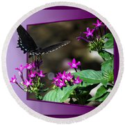 Black Butterfly 07 Round Beach Towel