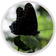 Black Butterfly Round Beach Towel