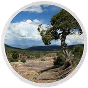 Black Canyon Juniper Round Beach Towel