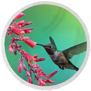 Black Chinned Hummingbird Round Beach Towel