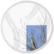 Black-crowned Night-heron Round Beach Towel