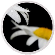 Black Daisy Reflection Round Beach Towel