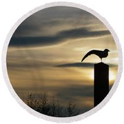 Black Headed Gull   Larus Ridibundus Round Beach Towel