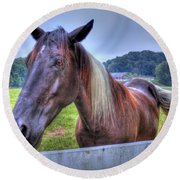 Black Horse At A Fence Round Beach Towel