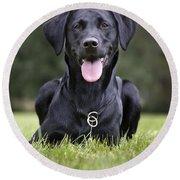 Black Labrador Dog Round Beach Towel