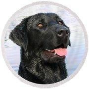 Black Labrador Retriever Dog Smile Round Beach Towel