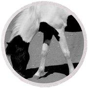 Black N White Horse Round Beach Towel
