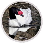 Black Necked Swan Round Beach Towel