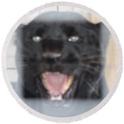 Black Panther Caged And Angry Round Beach Towel