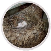 Black Phoebe Nest With Eggs Round Beach Towel