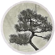 Black Pine Bonsai In Monochrome Round Beach Towel