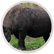 Black Rhino-19 Round Beach Towel