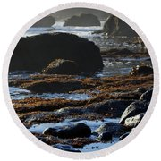 Black Rocks Lichen And Sea  Round Beach Towel