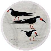 Black Skimmers  Round Beach Towel
