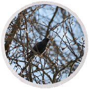Black  Starling Round Beach Towel