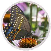 Black Swallowtail Butterfly Round Beach Towel