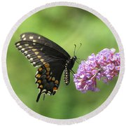 Black Swallowtail Butterfly Round Beach Towel
