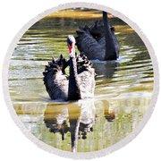 Black Swan 1 Round Beach Towel