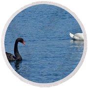 Black Swan White Swan Round Beach Towel