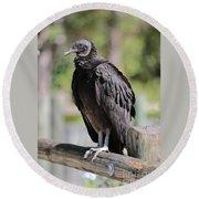 Black Vulture On The Boardwalk Round Beach Towel