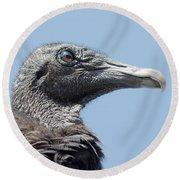 Black Vulture  Round Beach Towel