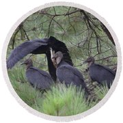 Black Vultures II Round Beach Towel