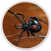 Black Widow Spider Round Beach Towel
