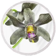 Black Yellow And Purple Orchid Round Beach Towel