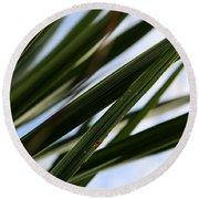 Blades Of Grass Round Beach Towel