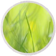 Blades Of Grass - Green Spring Meadow - Abstract Soft Blurred Round Beach Towel by Matthias Hauser