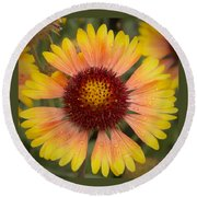 Blanket Flower Round Beach Towel