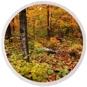 Blazing Forest Round Beach Towel