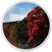 Blazing Maple Tree Round Beach Towel