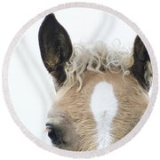 Blonde Horse Round Beach Towel