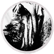 Bloodhound - It's Black And White - By Sharon Cummings Round Beach Towel