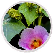 Bloom And Buds Round Beach Towel