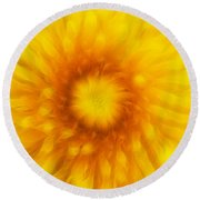 Bloom Of Dandelion Round Beach Towel