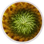Bloom Of The Sunflower Round Beach Towel