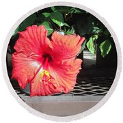 Bloom Where Planted Round Beach Towel
