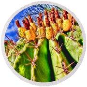 Blooming Barrel Cactus By Diana Sainz Round Beach Towel
