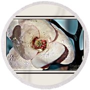 Blooming Magnolia Round Beach Towel