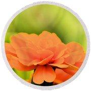 Blooming Marigold Round Beach Towel