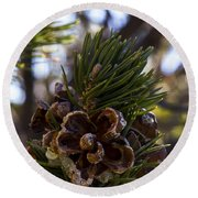 Blooming Pinecone Round Beach Towel