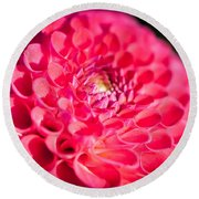 Blooming Red Flower Round Beach Towel by John Wadleigh